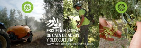 Curso Olivicultura Escuela Europea de Cata y Oleocultura