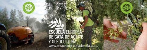 Octubre. Curso Olivicultura para la excelencia: Iniciación en el manejo del olivar dirigido a la obtención de aceites de oliva virgen extra de calidad
