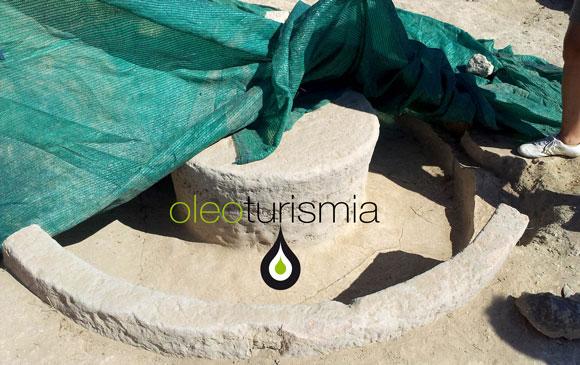Oleoturismo en Murcia: Almazara romana recién descubierta en Mula
