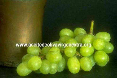 Las uvas son fruta de temporada para el mes de octubre