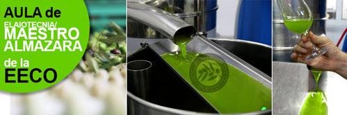 Abril 2015: Curso de Maestro de almazara/elaiotecnia: Gestión en la producción y elaboración de aceites de oliva virgen extra de calidad