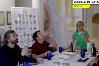 La EECO, Mar Luna y el AOVE protagonistas del programa «Al punto» de RTVE