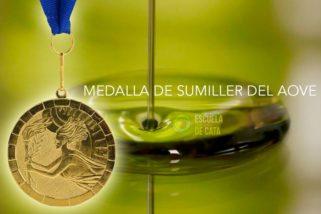Curso de Sumiller/Sommelier del Aceite de Oliva Virgen Extra (AOVE)