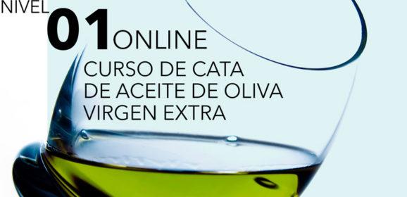 CURSO ONLINE NIVEL 1 CATA DE ACEITES DE OLIVA