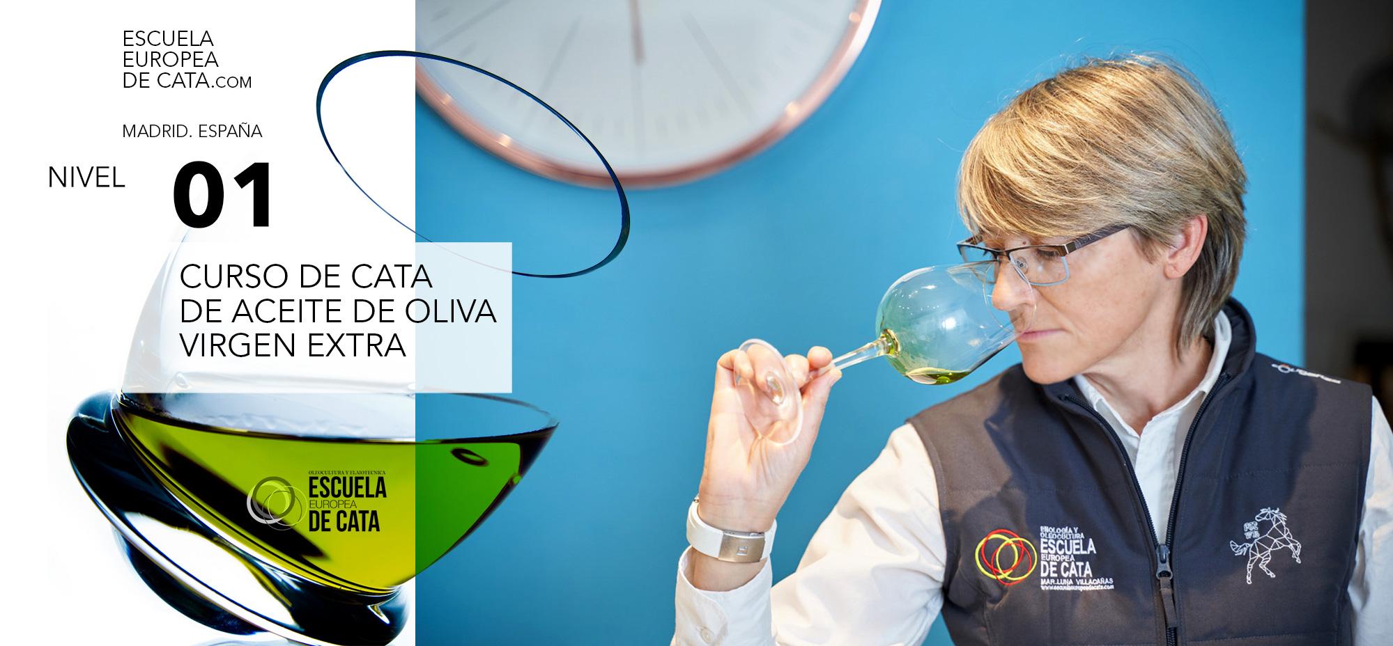nivel-1-de-cata-de-aceites-de-oliva-on-line-elearning