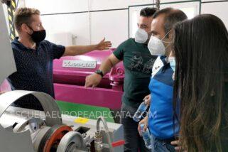 Curso de Maestro de almazara: Elaboración aceites de oliva virgen extra y cómo montar una almazara